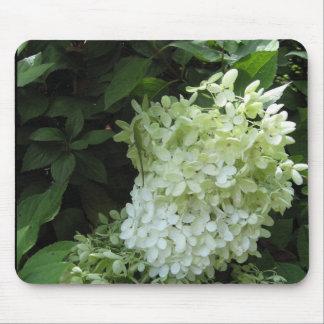 Hydrangea Blossom Mousepad
