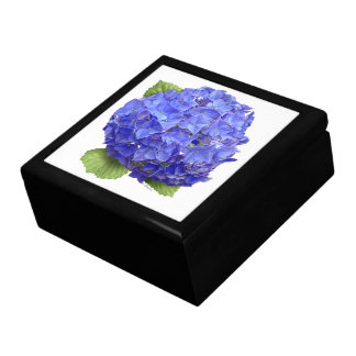 "Hydrangea ""Blue Heaven"" Gift Box"