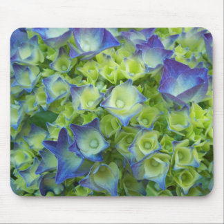 Hydrangea Buds Floral Mouse Mat