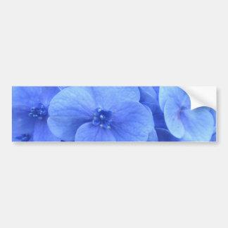 hydrangea bumper sticker