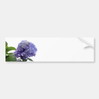 Hydrangea Bush Bumper Stickers