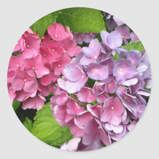 Hydrangea Floral Stickers