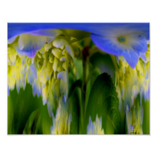 Hydrangea Flower Fantasy Floral Abstract Print