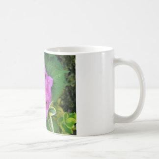 Hydrangea Flowers Coffee Mug