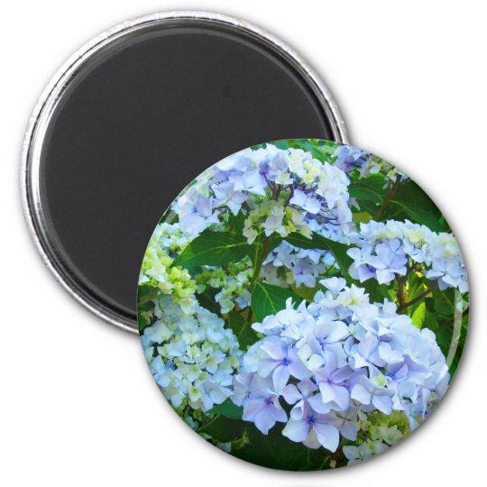 Hydrangea Flowers magnet gifts Blue Green garden