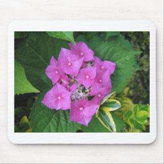 Hydrangea Flowers Mouse Mat