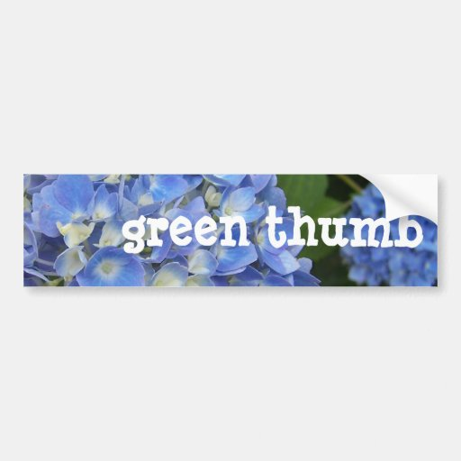 Hydrangea, Green-Thumb Bumper Stickers