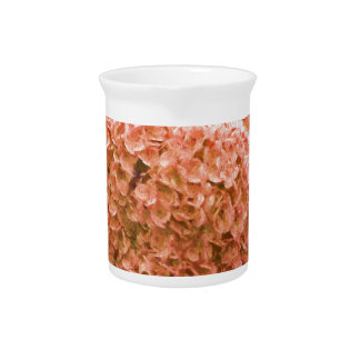 hydrangea in the garden pitcher