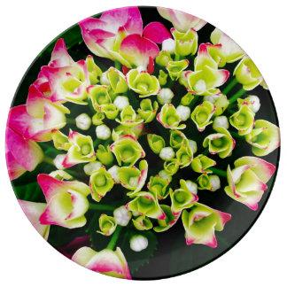Hydrangea Inspiration Porcelain Plate