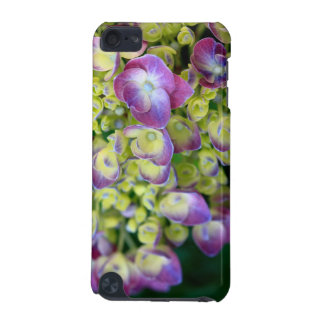 Hydrangea macro iPod touch 5G covers