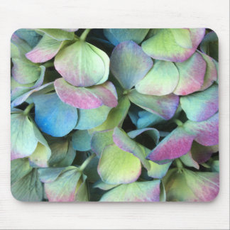 HYDRANGEA  Multi-color petals --- Mouse Mat
