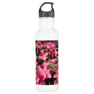 Hydrangea. Pink Flowers. 710 Ml Water Bottle
