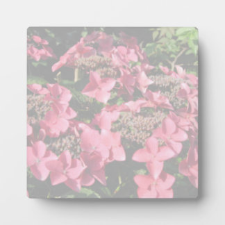 Hydrangea. Pink flowers. Soft Pastel Colors. Plaque