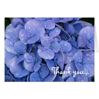 Hydrangea Thank You notecard