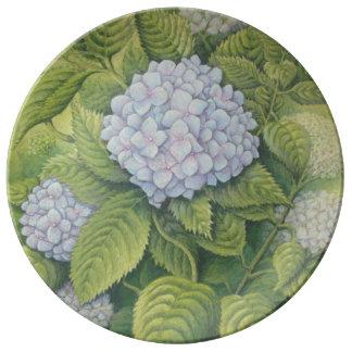 Hydrangeas at Lanhydrock, Cornwall Porcelain Plate