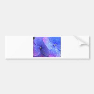 Hydrangeas Bumper Sticker