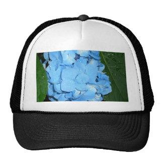 Hydrangeas CricketDiane Art,  Design & Photography Hat