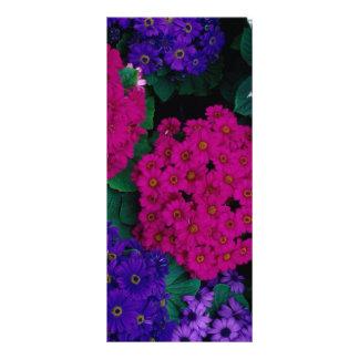 HYDRANGEAS DARK PINK PURPLES FLOWERS BEAUTY NATURE PERSONALISED RACK CARD