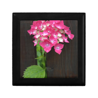 hydrangeas in bloom small square gift box