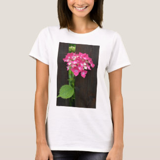 hydrangeas in bloom T-Shirt