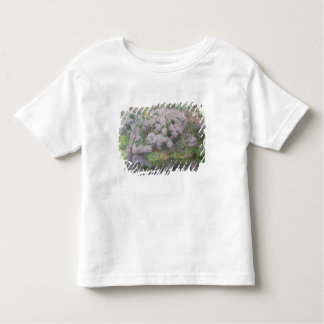 Hydrangeas on the banks of the River Lys, 1898 (oi Toddler T-Shirt