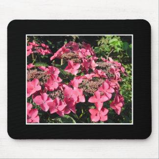 Hydrangeas. Pink Flowers on Black. Mouse Mat