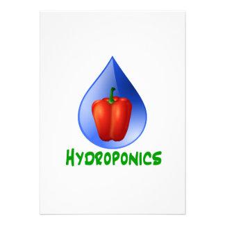 Hydroponics, Bell Pepper, drop, green text Announcements