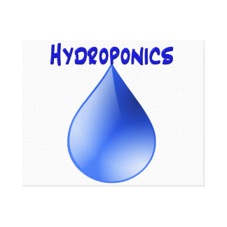 Hydroponics blue letters with blue drop graphic stretched canvas print