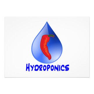 Hydroponics, chili pepper, blue text design personalized announcements