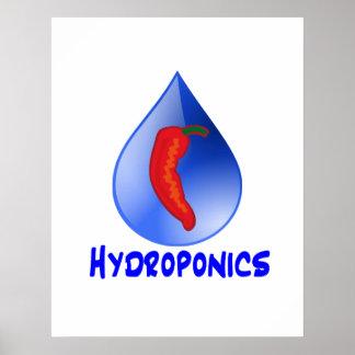 Hydroponics chili pepper blue text design posters