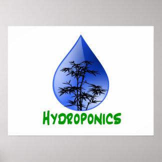 Hydroponics design-black bamboo print