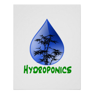 Hydroponics design-black bamboo posters