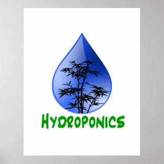 Hydroponics design-black bamboo posters