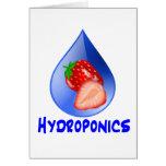 Hydroponics Design with strawberry Blue drop