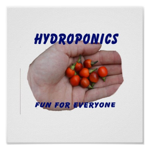 Hydroponics Fun Cascabel Hot Peppers Hand Posters