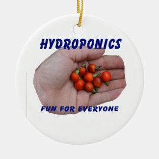Hydroponics Fun Cascabel Hot Peppers Hand Round Ceramic Decoration