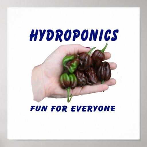 Hydroponics Fun Chocolate Habanero Peppers Poster