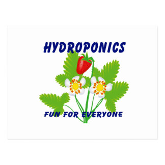 Hydroponics Fun For Everyone Strawberries Postcard