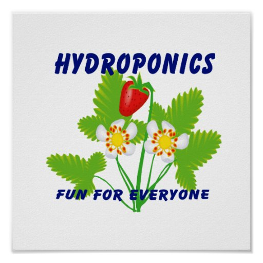 Hydroponics Fun For Everyone Strawberries Poster
