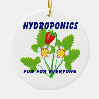 Hydroponics Fun For Everyone Strawberries Round Ceramic Decoration