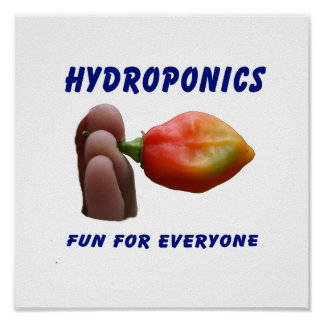 Hydroponics Fun Habanero Pepper Flame Fingers Posters