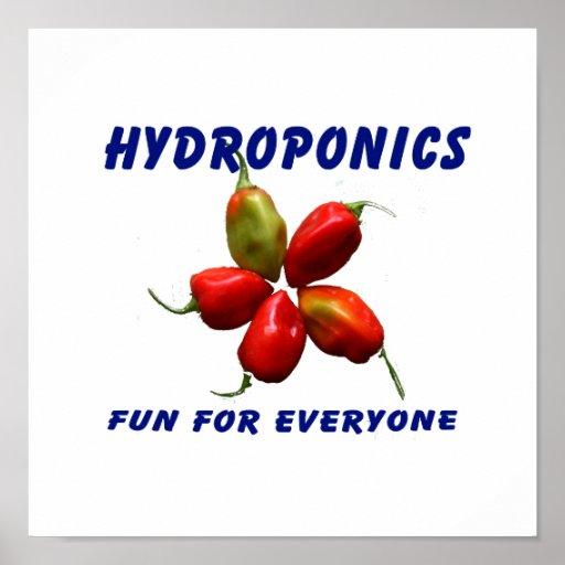 Hydroponics Fun Star Habanero Pepper Design Posters