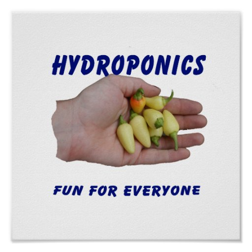 Hydroponics Fun White Habanero Peppers Hand Poster