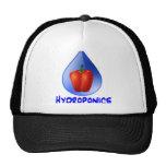 Hydroponics graphic, hydroponic pepper & drop