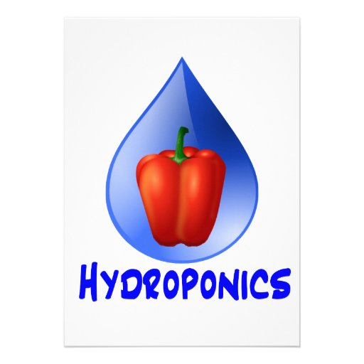 Hydroponics graphic, hydroponic pepper & drop personalized announcement