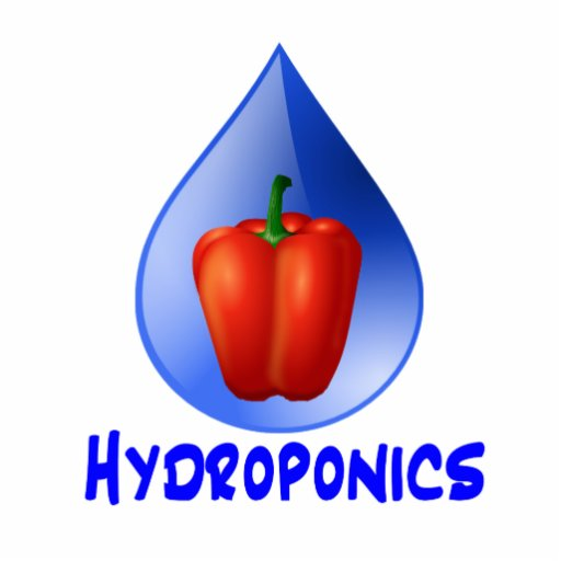 Hydroponics graphic, hydroponic pepper & drop photo cutout