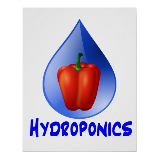Hydroponics graphic, hydroponic pepper & drop posters