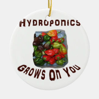 Hydroponics Grows On You Canvas Peppers Round Ceramic Decoration