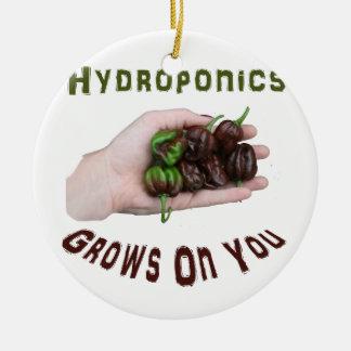 Hydroponics Grows On You Chocolate Habanero Round Ceramic Decoration