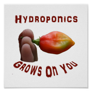 Hydroponics Grows On You habanero fingers Posters